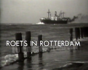 Roets in Rotterdam